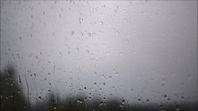 Deszcz krople na nadokiennym szkle zdjęcie wideo