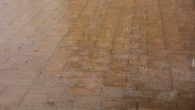 Deszcz krople spadają na chodniczek płytce w parku zbiory