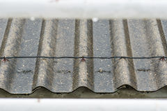 Deszcz na dachu Fotografia Stock