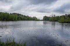 Deszcz na jeziorze Zdjęcia Royalty Free