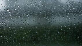 Deszcz na trawy okno Obrazy Stock