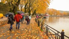 Deszcz opuszcza drzewa w Ioannina miasta Greece zimie Obrazy Royalty Free