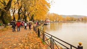 Deszcz opuszcza drzewa w Ioannina miasta Greece zimie Obraz Stock