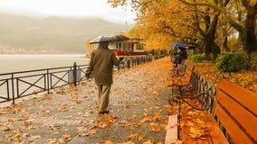 Deszcz opuszcza drzewa w Ioannina miasta Greece zimie Zdjęcia Stock
