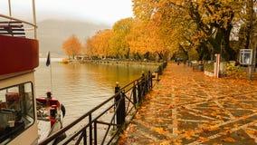 Deszcz opuszcza drzewa w Ioannina miasta Greece zimie Obraz Royalty Free