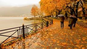 Deszcz opuszcza drzewa w Ioannina miasta Greece zimie Fotografia Royalty Free