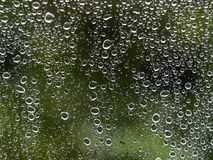 Deszcz opuszcza na okno z zielonym drzewem w tle zdjęcie royalty free