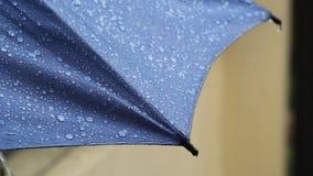 Deszcz Opuszcza uderzać błękitnego parasol zbiory