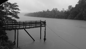 Deszcz w dżungli Fotografia Stock