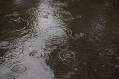 Deszczowego dnia, deszczu i wody czochry, Fotografia Stock
