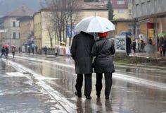 Deszczowy dzień w wiośnie fotografia stock