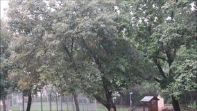 Deszczowy dzień z grzmotem zdjęcie wideo