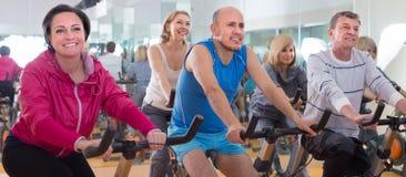 Det äldre folket gör sportar på motionscykeler royaltyfria bilder