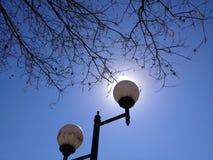 Det är inte solen, denna är parkerar ljus royaltyfria foton
