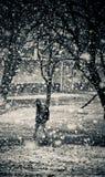 Det är snöig i mars Arkivfoton