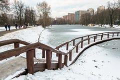 Det ödelade eftertänksamma fryste dammet i stad parkerar på en molnig vinterdag royaltyfri bild