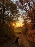 Det ögonblick, då solen går down🌄, arkivfoton