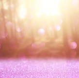 Det abstrakta fotoet av ljusbristningen bland träd och blänker bokehljus bilden är suddig och filtrerad arkivbild
