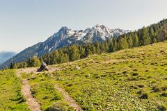 Det alpina landskapet med betar vattenho i västra Carinthia, Österrike Royaltyfri Bild