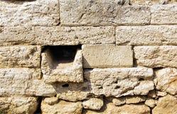 Det antika murverket från skal vaggar, utgrävningar av grekiska bosättningar Arkivfoto