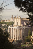 Det arkeologiska roman forumet parkerar Royaltyfria Bilder