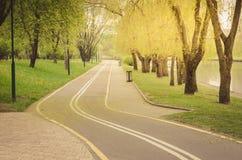 det asfalterade cykelspåret i parkerar längs sjön/det asfalterade cykelspåret i parkerar längs sjön i sanny dag royaltyfri bild