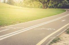 Det asfalterade cykelspåret i parkerar/det asfalterade cykelspåret i parkerar i solig dag royaltyfri fotografi