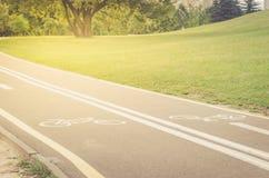det asfalterade cykelspåret i parkerar/det asfalterade cykelspåret i parkerar i soluppgång royaltyfri fotografi