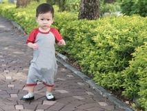 Det asiatiska lilla barnet går parkerar in utomhus- morgonsommar Royaltyfria Foton