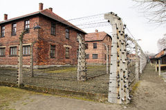 Det auschwitz lägret Arkivfoto