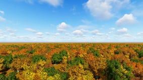Det Autum skoglandskapet 3D framför arkivfilmer