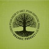 Det avlövade trädet med rotar vektorlogo organisk produkt stock illustrationer