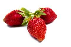 Det bästa skottet, stänger sig upp av nya jordgubbar, gröna sidor på isolerad vit bakgrund, den selektiva fokusen, utrymme för te royaltyfria foton