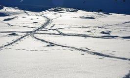Det berömda berget i Schweiz royaltyfria bilder