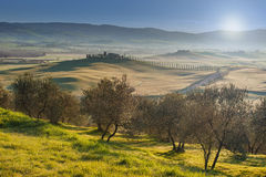 Det berömda Tuscan landskapet av den Val d'Orciaen Royaltyfri Foto