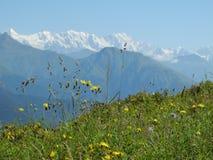 Det bergigt av Svaneti Arkivfoto