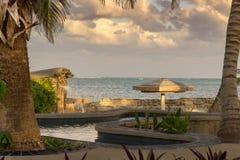 Det blänka karibiska havet ställer in en bedöva bakgrund till palmträd och lövverk på kusten av gråambra Caye, Belize arkivbild