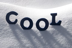 Det blåa ordet kyler på snö Arkivbilder