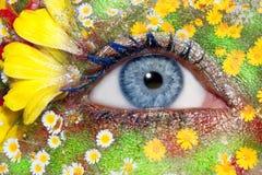 det blåa ögat blommar kvinnan för makeupmetaforfjädern Arkivfoto