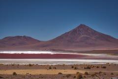 Det bolivianska ökenlandskapet av saltar lägenheter fotografering för bildbyråer