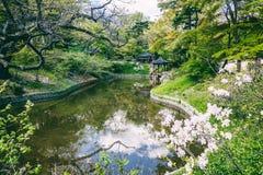 Det Buyeongji dammet på Huwonen parkerar, den hemliga trädgården, Changdeokgung p Royaltyfri Fotografi