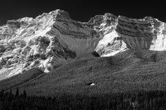 Det Casscade berget, Banff parkerar vinter Arkivfoton