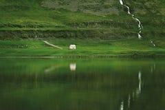 Det charmiga lantliga lantliga huset på fjordbakgrund Arkivbild