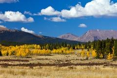 Det Colorado berg landskap i nedgång Arkivfoton