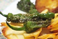 Det Combo uppläggningsfat med det stekte ägget, fransmansmåfiskar, stekte peppar och br Royaltyfri Foto