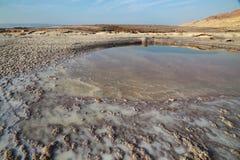 Det döda havet saltar Arkivfoton