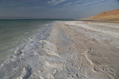 Det döda havet saltar Royaltyfri Foto