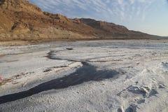 Det döda havet saltar Fotografering för Bildbyråer