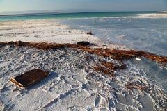 Det döda havet saltar Arkivbilder
