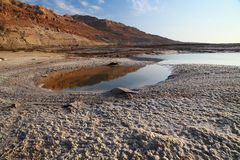 Det döda havet saltar Royaltyfri Bild